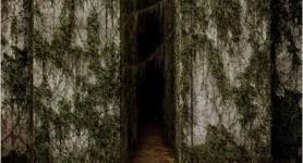 Bande annonce : Le labyrinthe